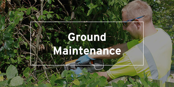 Ground Maintenance
